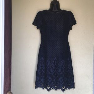 LOFT Shirt Dress Navy Blue Lace overlay size 0.